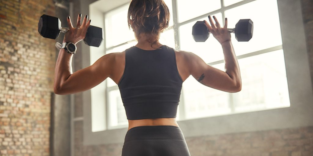 equipment for back workout